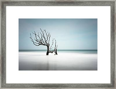 Weathered Framed Print by Ivo Kerssemakers