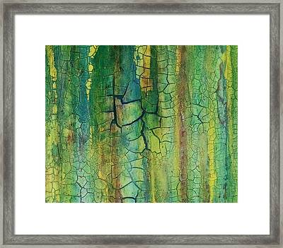 Weathered Moss Framed Print by Alan Casadei