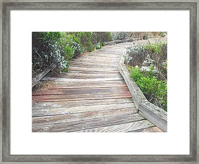 Weathered Path Framed Print
