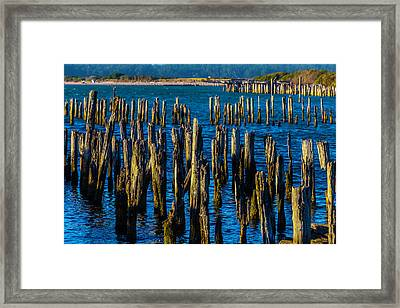 Weathered Pier Posts Framed Print