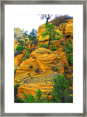 Weathered Rock Framed Print by Dennis Hammer