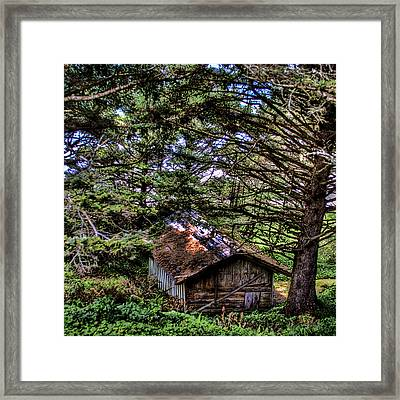 Weathered Shed Framed Print by David Patterson
