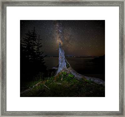 Weathered Stump Under The Stars Framed Print by Brent L Ander