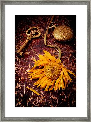 Weathered Sunflower With Gold Key Framed Print by Garry Gay