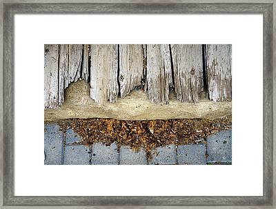 Framed Print featuring the photograph Weathered by Tom Romeo