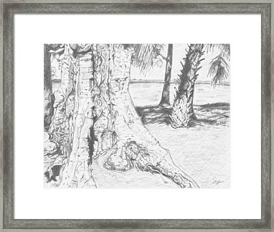 Weathered Trees Framed Print