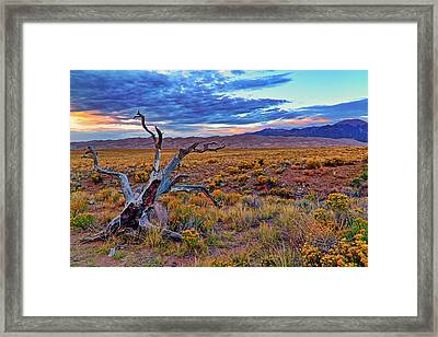 Framed Print featuring the photograph Weathered Wood And Dunes - Great Sand Dunes - Colorado by Jason Politte