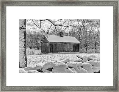 Weathering Winter Bw Framed Print by Bill Wakeley
