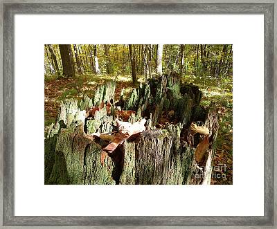 Weatherlog-7 Framed Print by The Stone Age