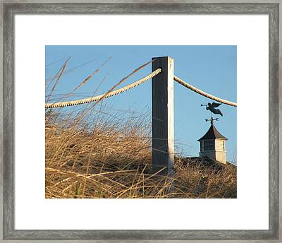 Weathervane Framed Print by Donald Cameron