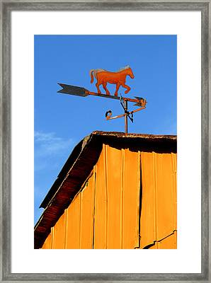 Weathervane Framed Print by Robert Lacy