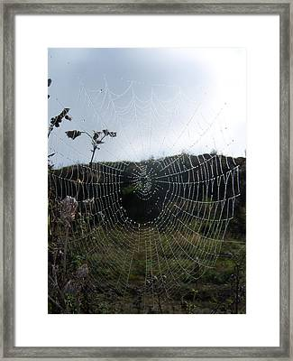 Web Browser Framed Print by Ken Day
