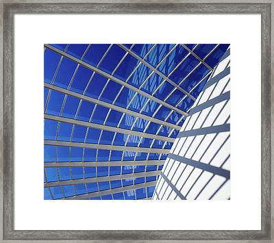 Web Framed Print by Stefan Nielsen