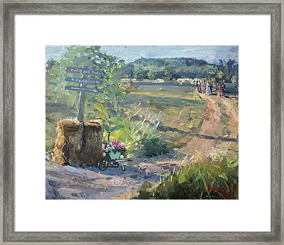 Wedding In The Farm Grorgetown  Framed Print by Ylli Haruni