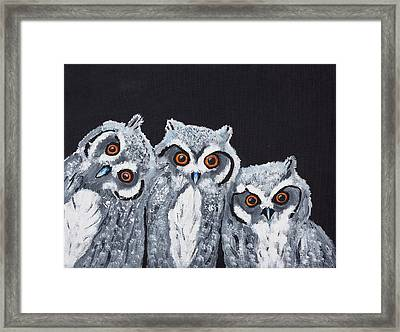 Framed Print featuring the painting Wee Owls by Scott Wilmot