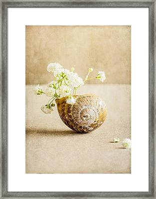 Wee Vase Framed Print