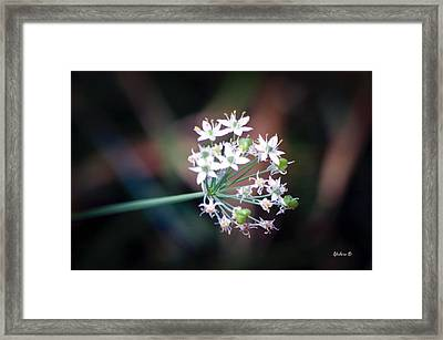 Weed Flower Framed Print