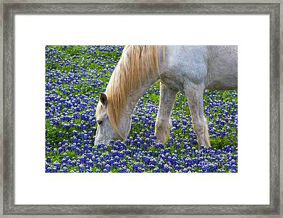 Weeding The Garden Framed Print