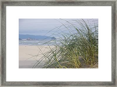 Weekend At The Beach Framed Print by Angi Parks