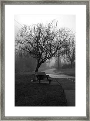 Weeping Framed Print by Ayesha  Lakes