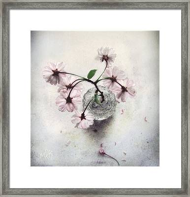 Framed Print featuring the photograph Weeping Cherry Blossoms Still Life by Louise Kumpf