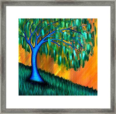 Weeping Willow Framed Print by Brenda Higginson
