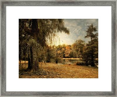 Weeping Willow Framed Print by Jessica Jenney
