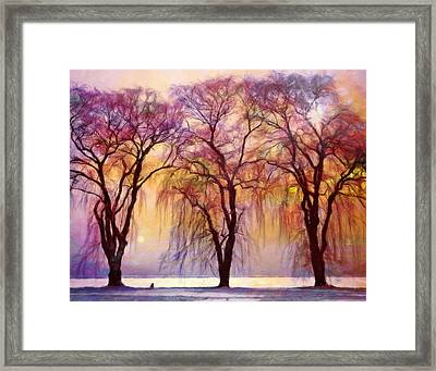 Weeping Willow Oh Weep No More Framed Print by Georgiana Romanovna