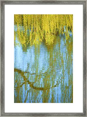Weeping Willow - Reflections In Water Framed Print by Nikolyn McDonald
