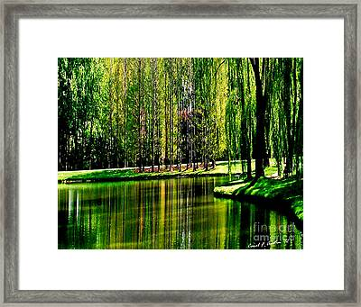 Weeping Willow Tree Reflective Moments Framed Print by Carol F Austin