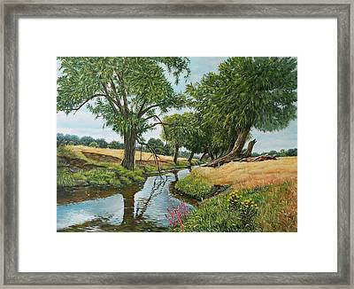 Weeping Willows At Beverley Brook Framed Print