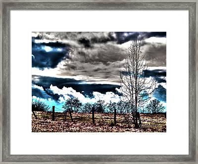 Weide Framed Print