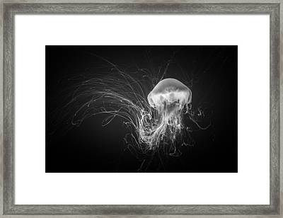 Weightless Framed Print