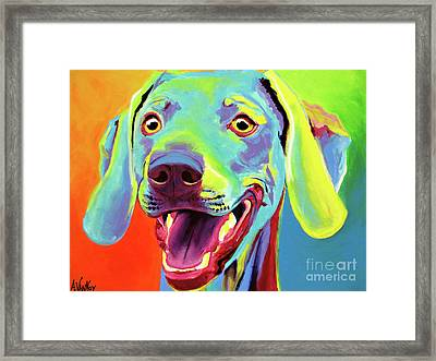 Weimaraner - Taffy Framed Print by Alicia VanNoy Call