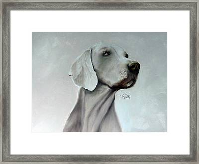 Weimaraner Framed Print by Dick Larsen