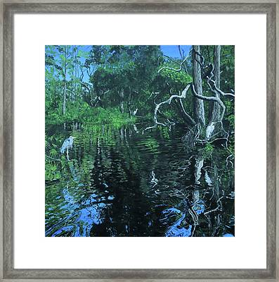 Wekewa River Framed Print