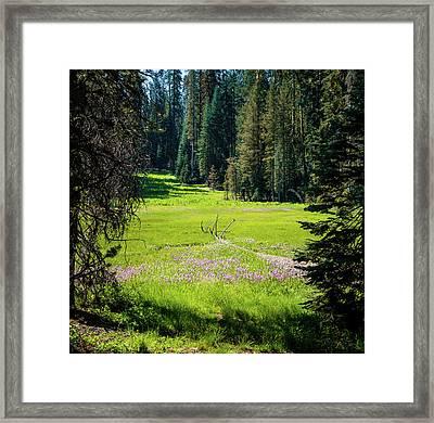 Welcom To Life- Framed Print