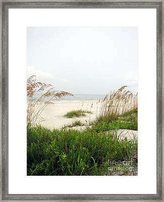 Welcome  Framed Print by Amanda Barcon