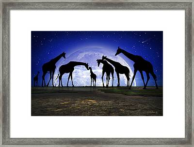 Welcome Framed Print by Brian Wallace