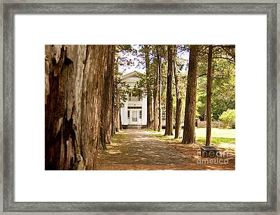 Welcome Home Framed Print by Sandy Adams