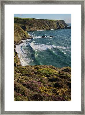Welcome Mouth Framed Print by Pete Hemington