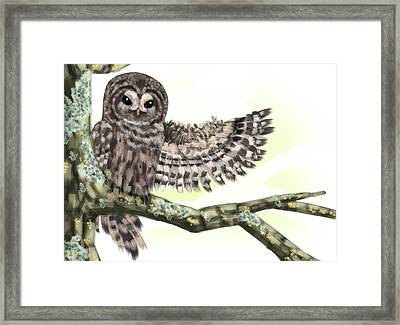 Welcome Owl Framed Print by Gin Sunny