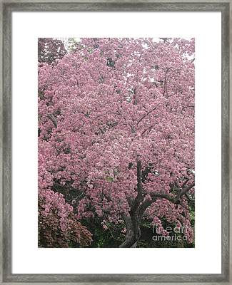 Welcome Spring 10 Framed Print