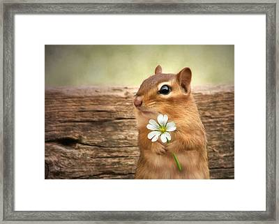 Welcome Spring Framed Print by Lori Deiter