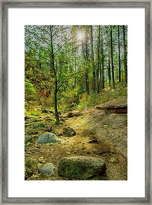 Welcome The Sunlight Framed Print by Marshall Everett
