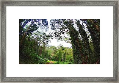 Welcome To Hawaii Framed Print by Jera Sky