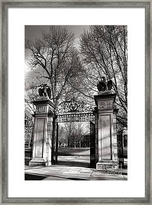 Welcome To Princeton University Framed Print by Olivier Le Queinec