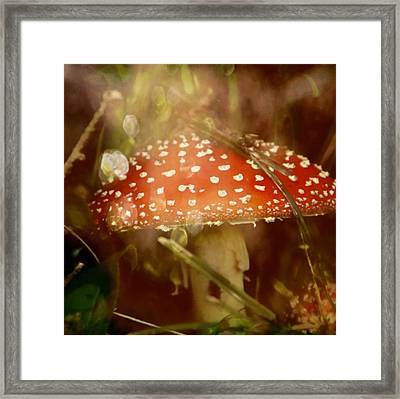 Welcome To Wonderland Framed Print by Odd Jeppesen