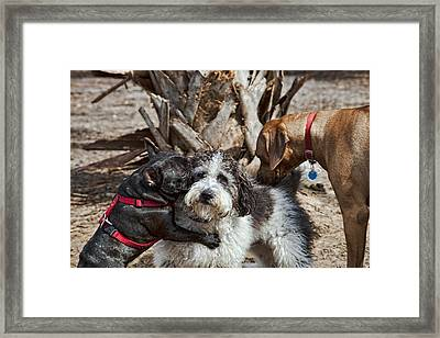 Welcome Wagon Framed Print