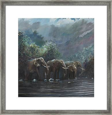 Welcome Waters Framed Print by Vincent Alexander Booth